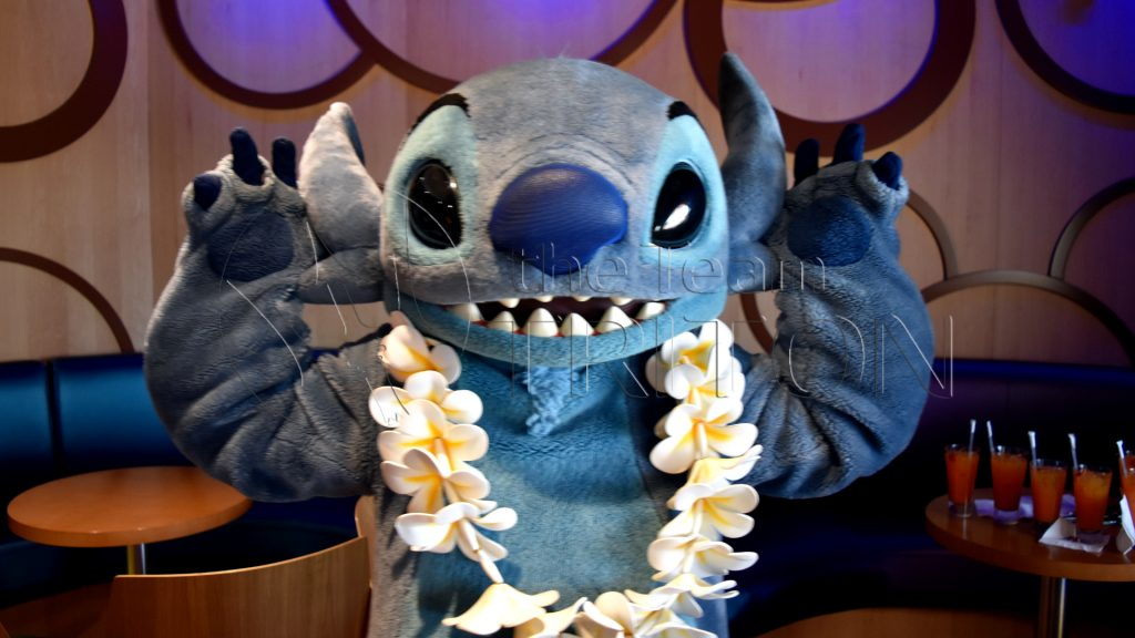 stich-at-DVC-party