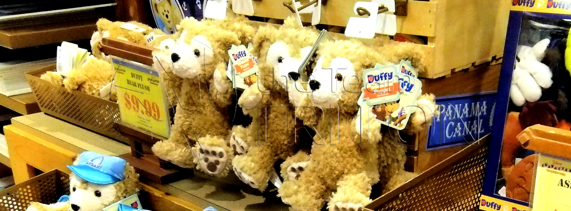 duffy-outlet-eye-catch