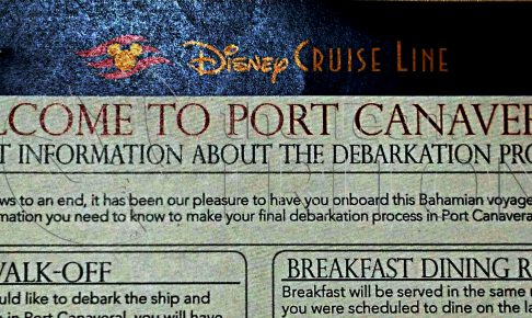 important-information-about-the-debarkation-procedeure