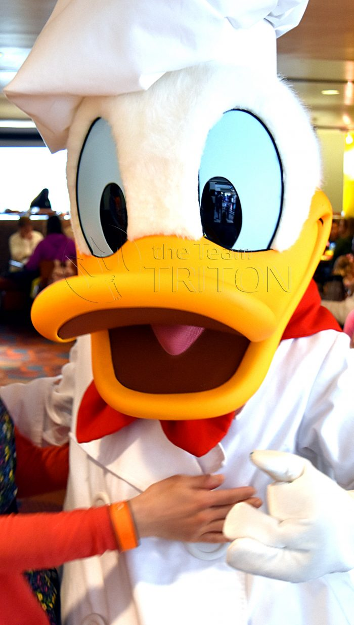 chef-mickeys-greeting-donald-001