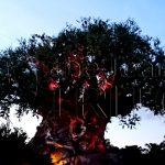 AK-reference-eye-catch-tree-of-life-001
