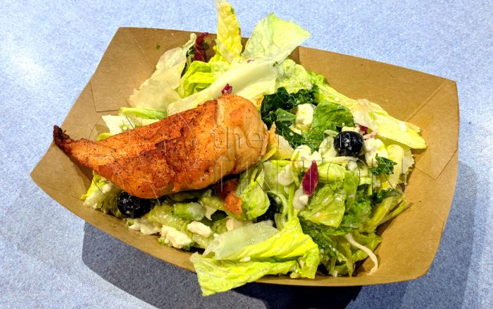 EP-Electric-Umbrella-Energy-Salad-with-Roasted-Chicken-001